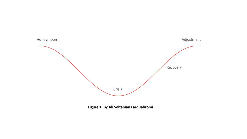 U-curve hypothesis for culture shock